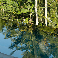 Bali 2005 - Reflections in the eyeling pool